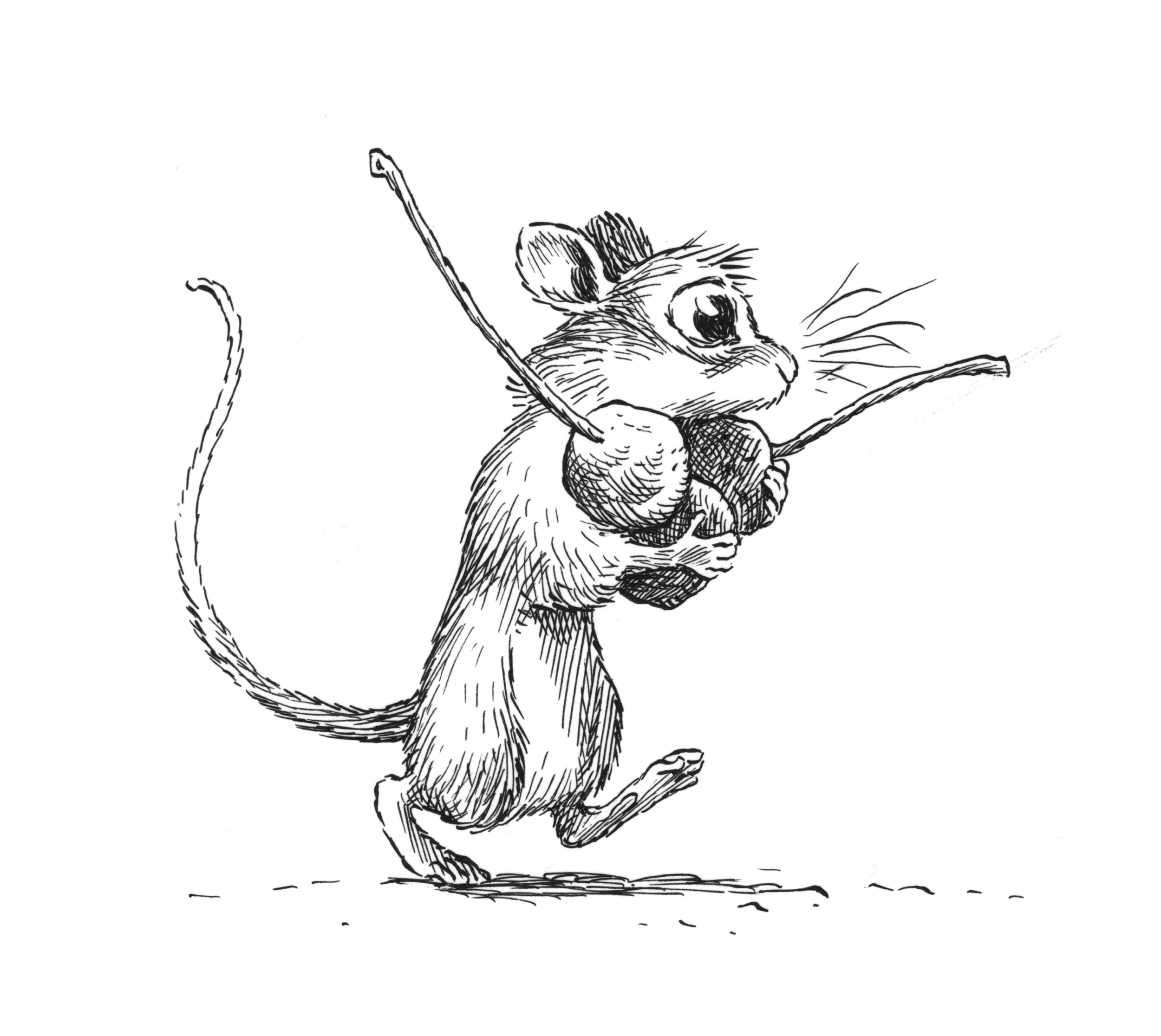 mouse carrying.jpg