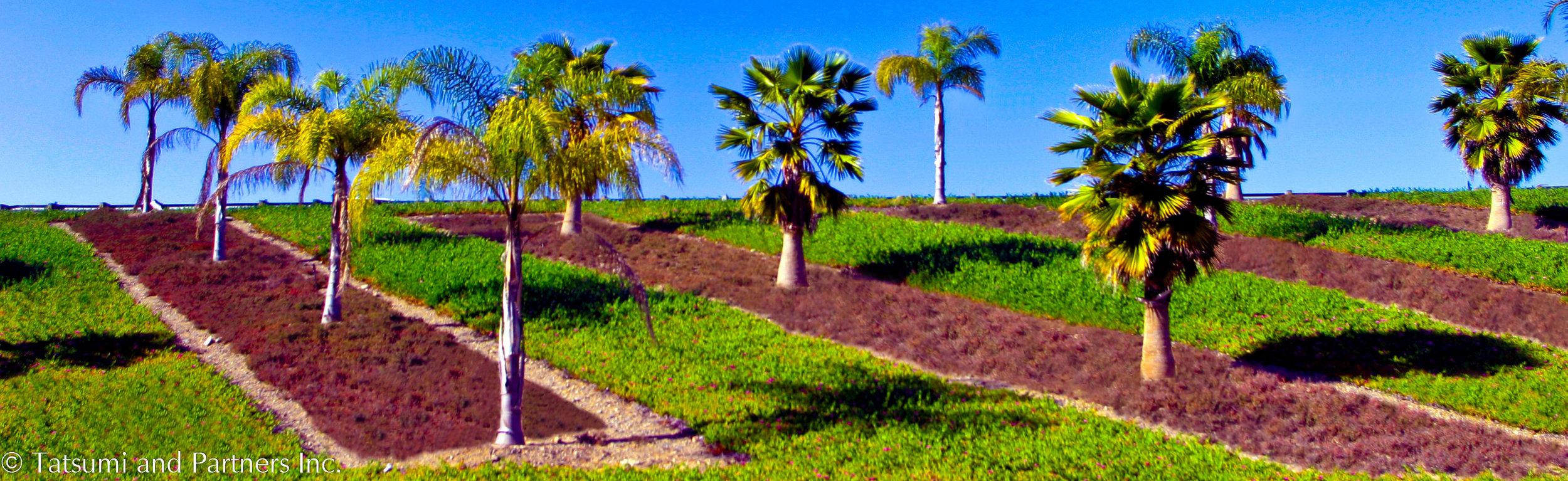Highway_SR22_Landscape 3.jpg