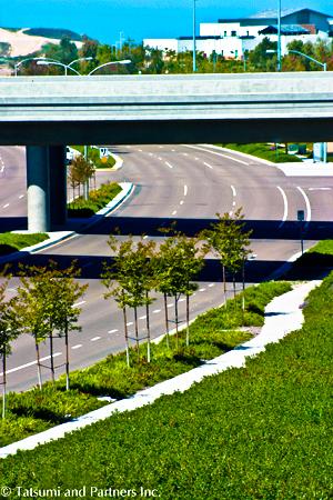 Highway_SR125_Landscape 10 low res.jpg