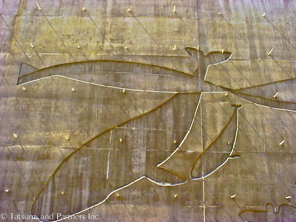 Aesthetic Wall_Oxnard 101_01.jpg