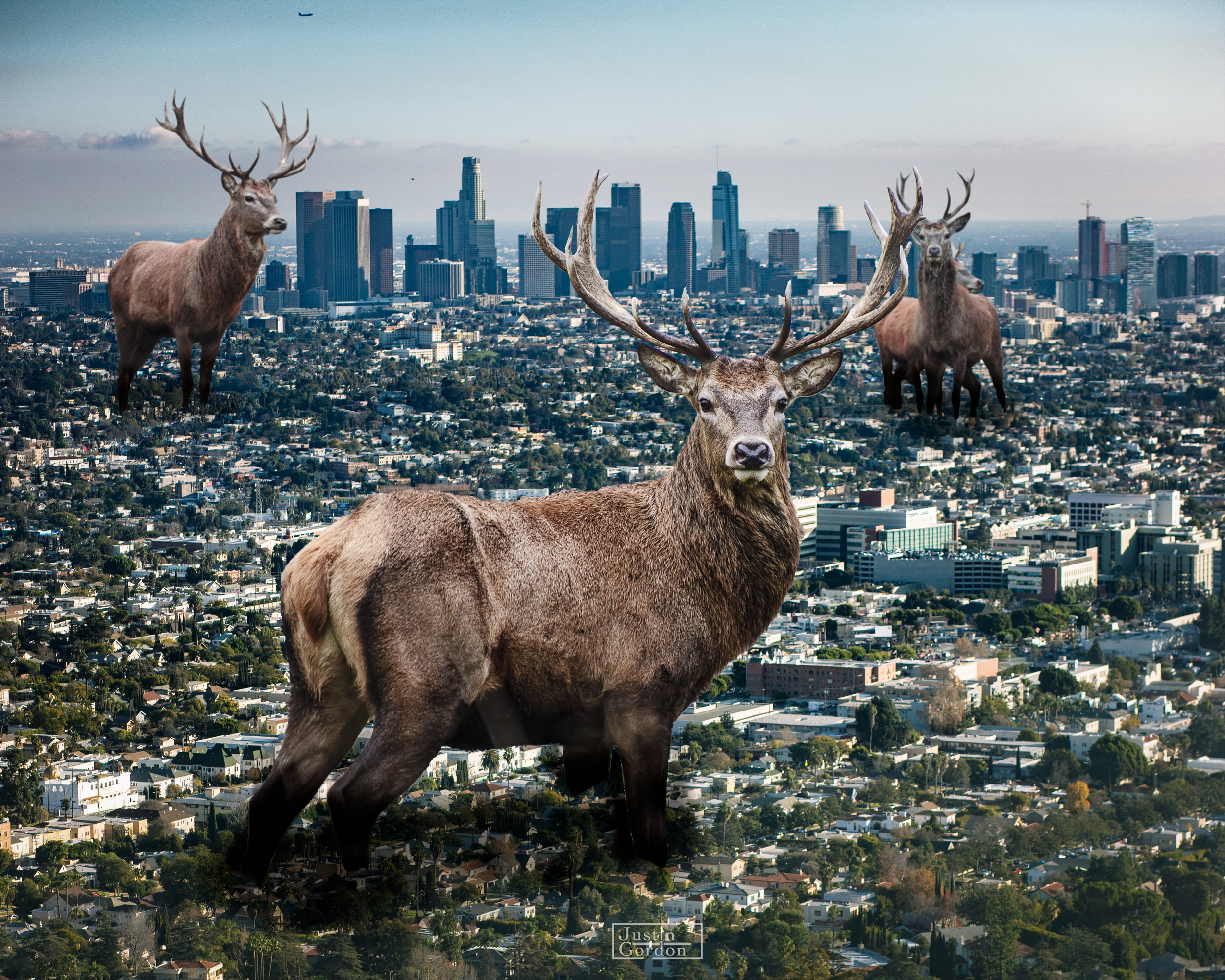 Los Angeles invasion—a monument to the Milwaukee Bucks. (Picture by Justin Gordon)