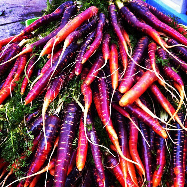 purple carrot pic.jpg