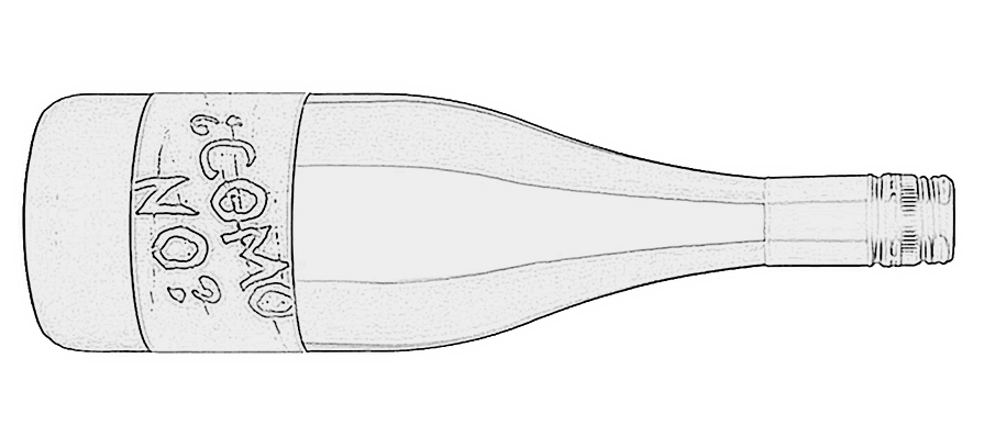 Bottle-Sketch.jpg