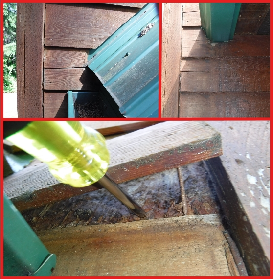 Puyallup-home-inspector-kickout8.jpg