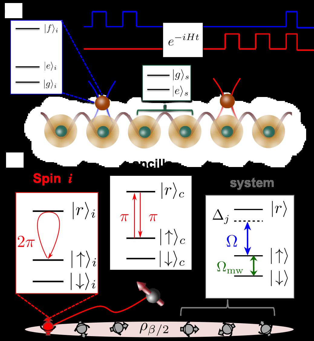 Interferometric approach to probing fast scrambling