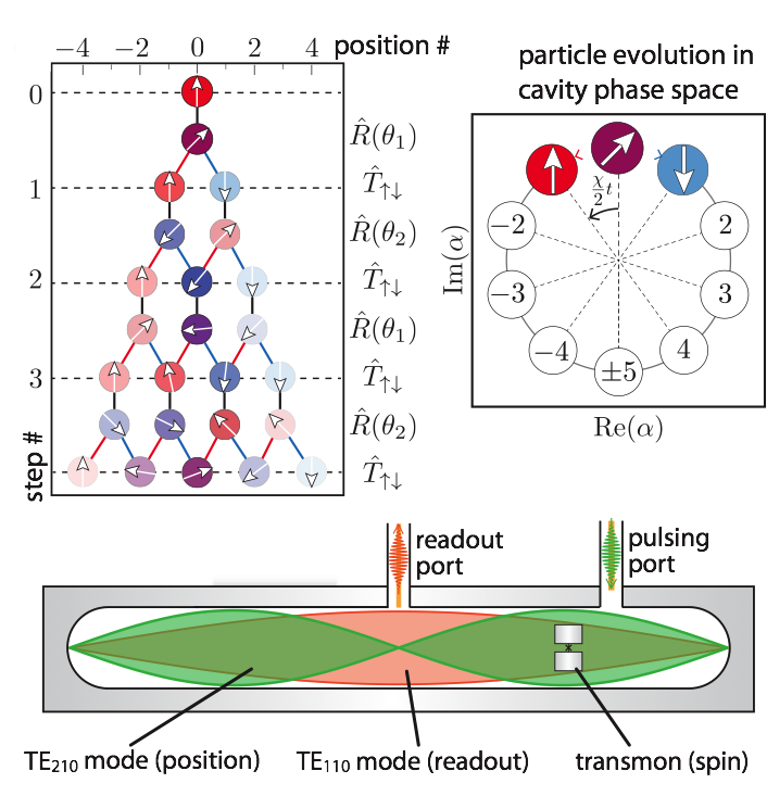 Topological invariants using quantum walk in superconducting circuits