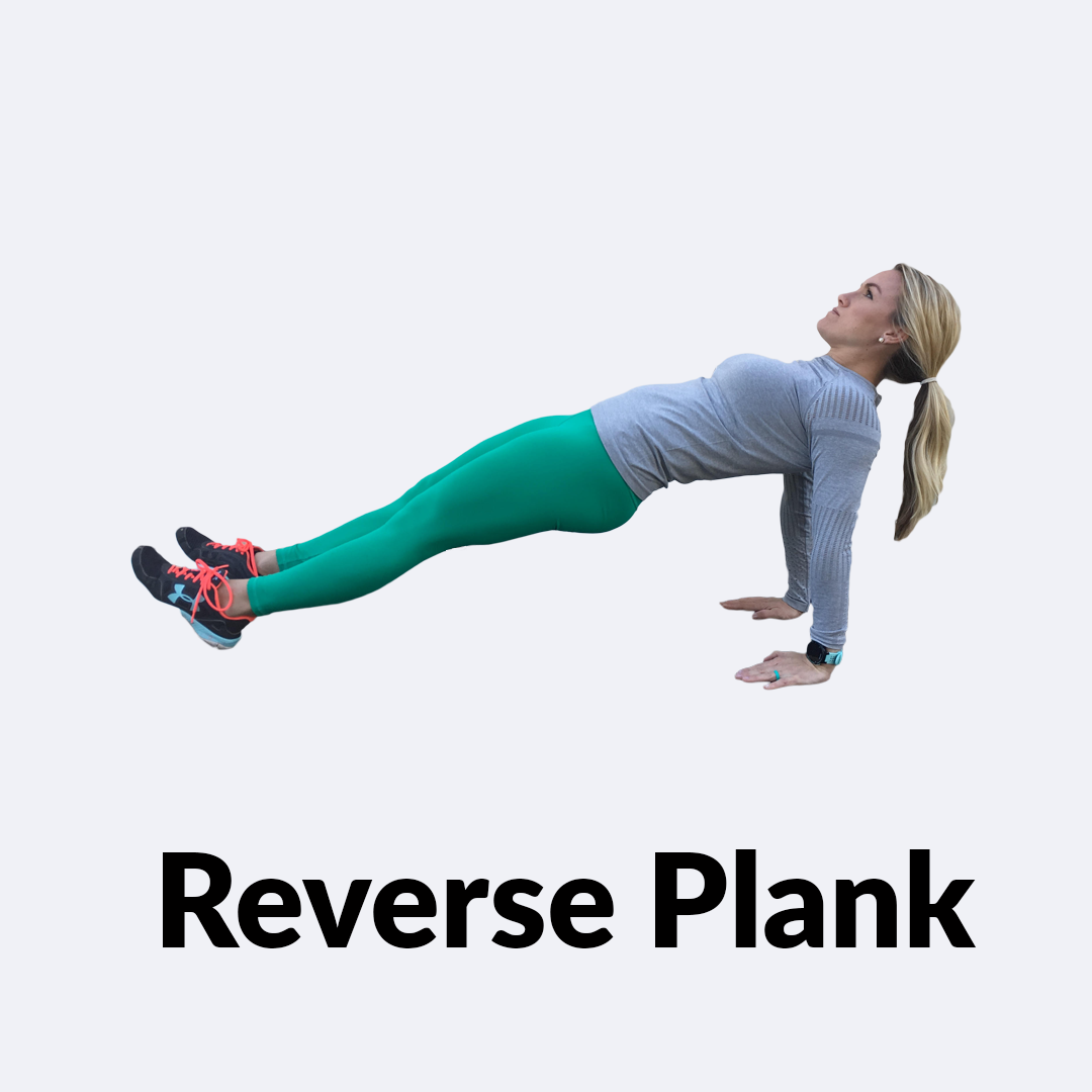Reverse-Plank.png