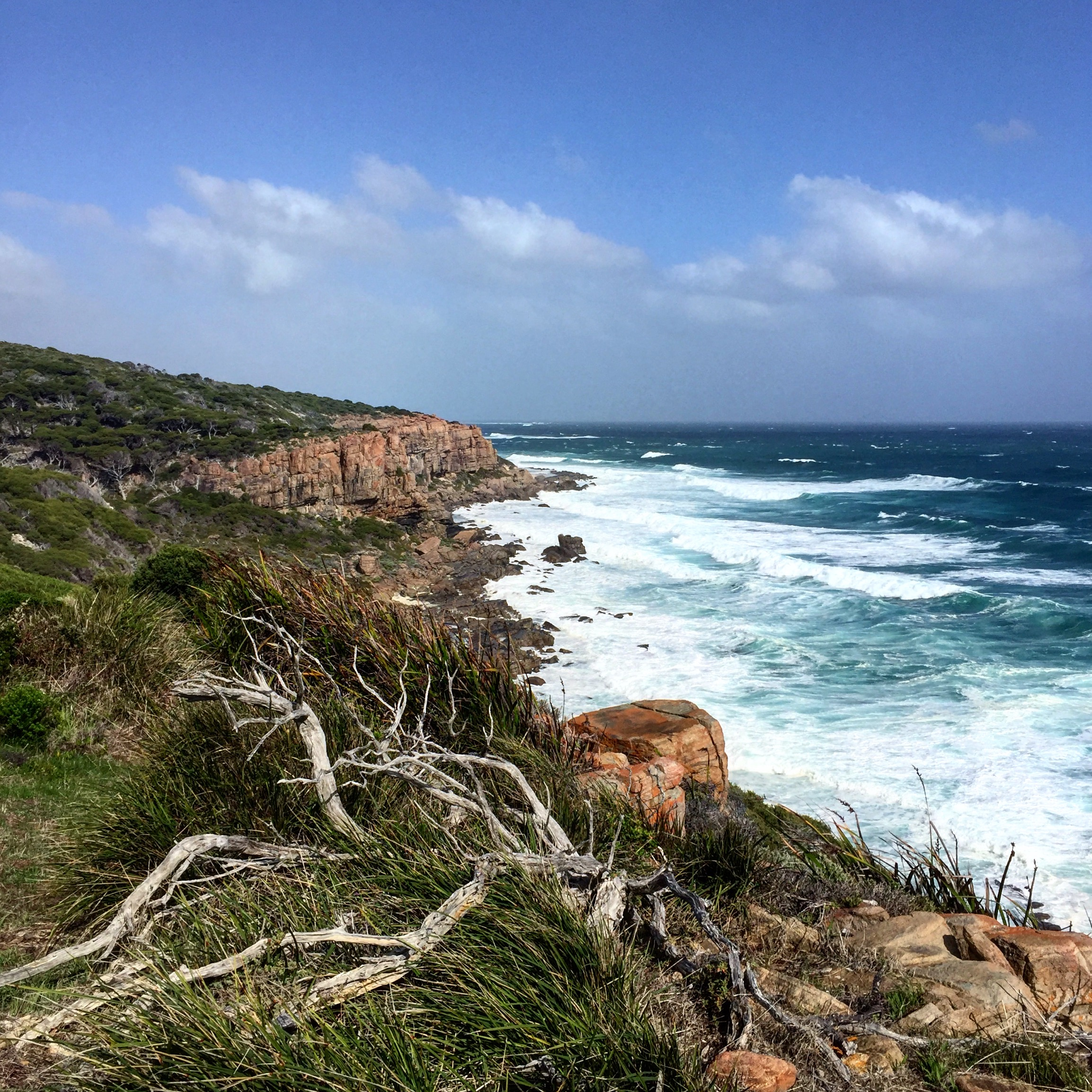 Willyabrup Cliffs, on the Cape to Cape Track