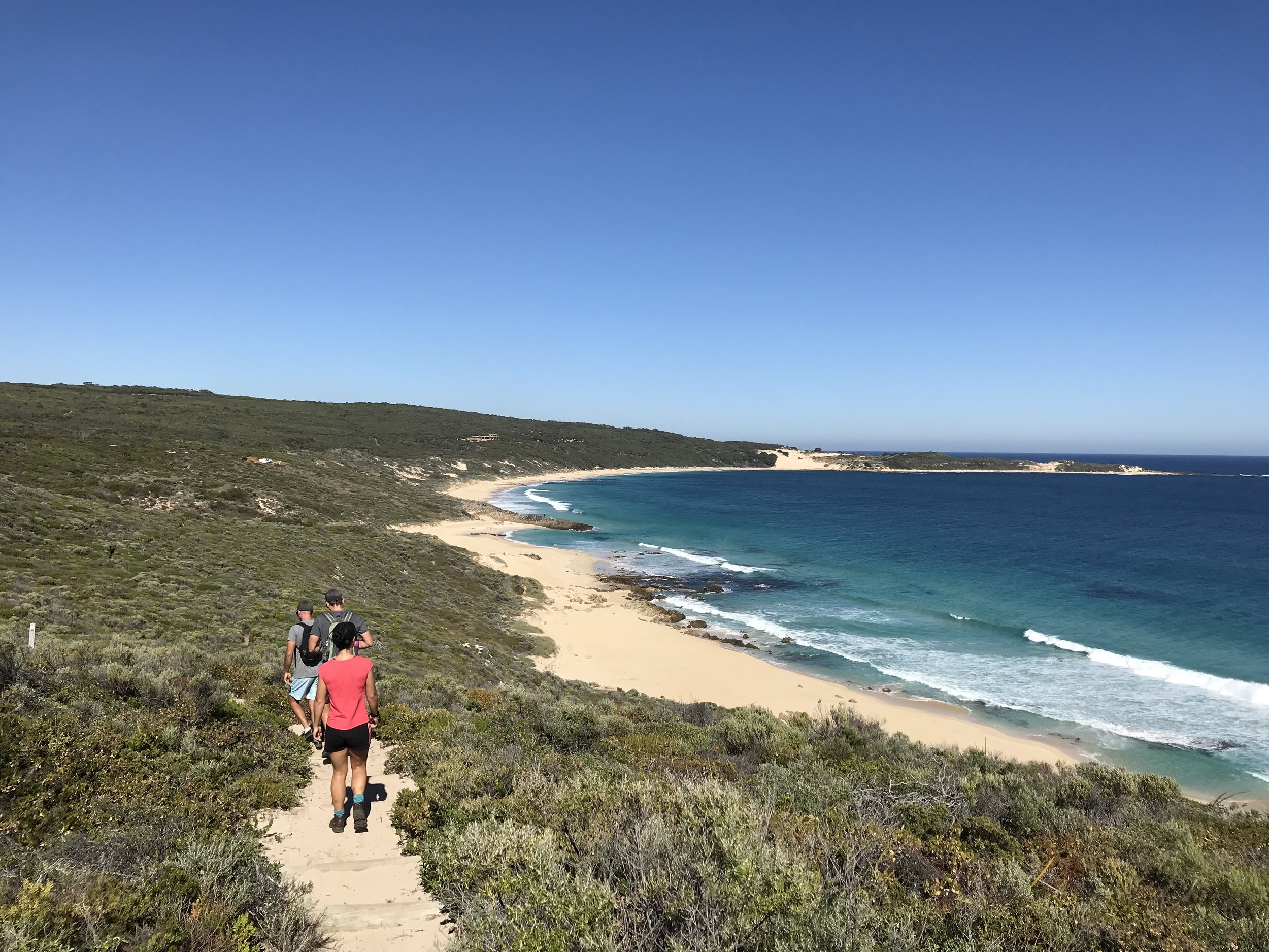 Cape to Cape Track - Swells Stays Guide…
