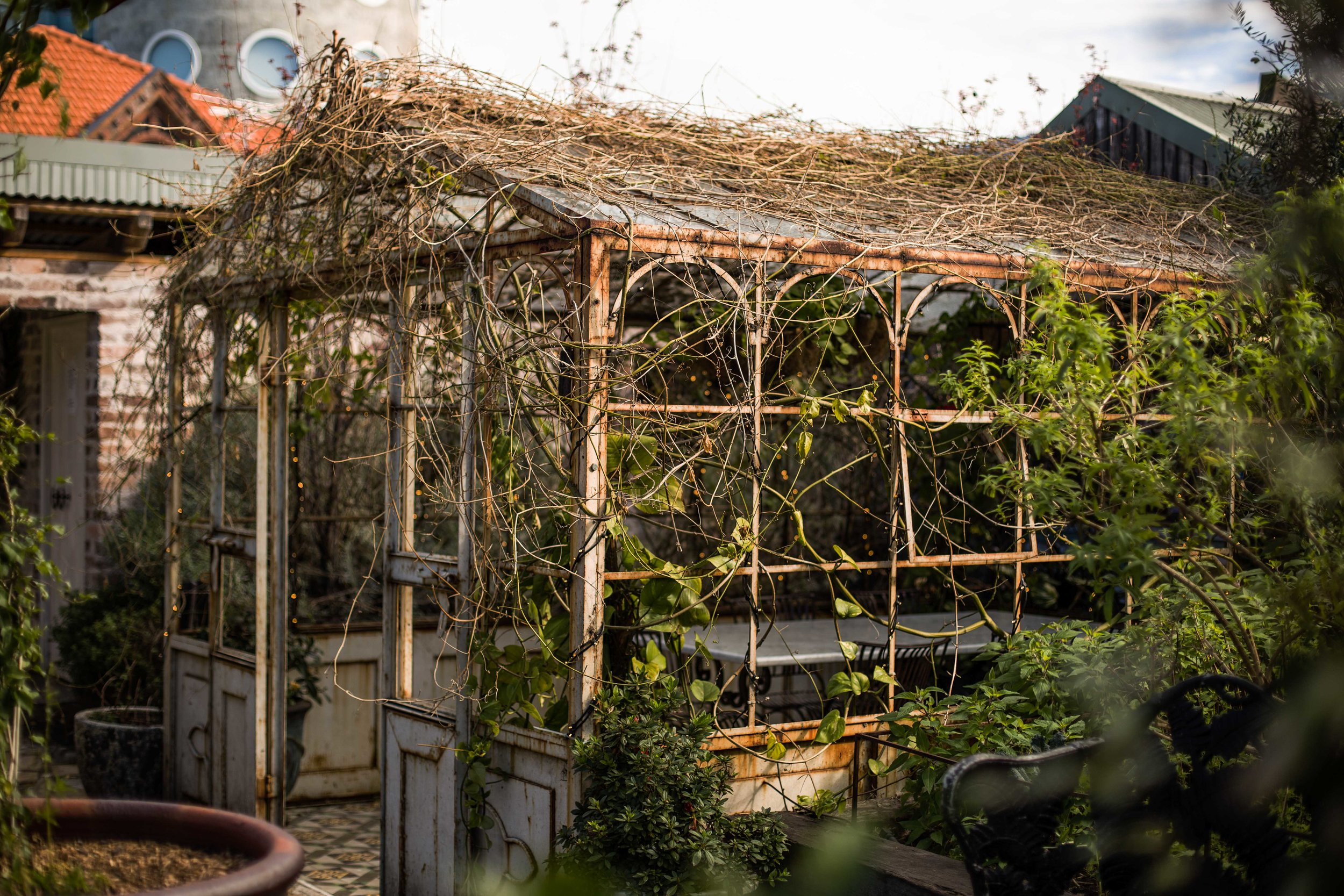 garden LoRes-11.jpg