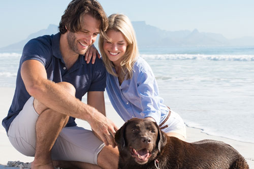 Happy smiling couple kneeling with their dog on a Santa Barbara beach.