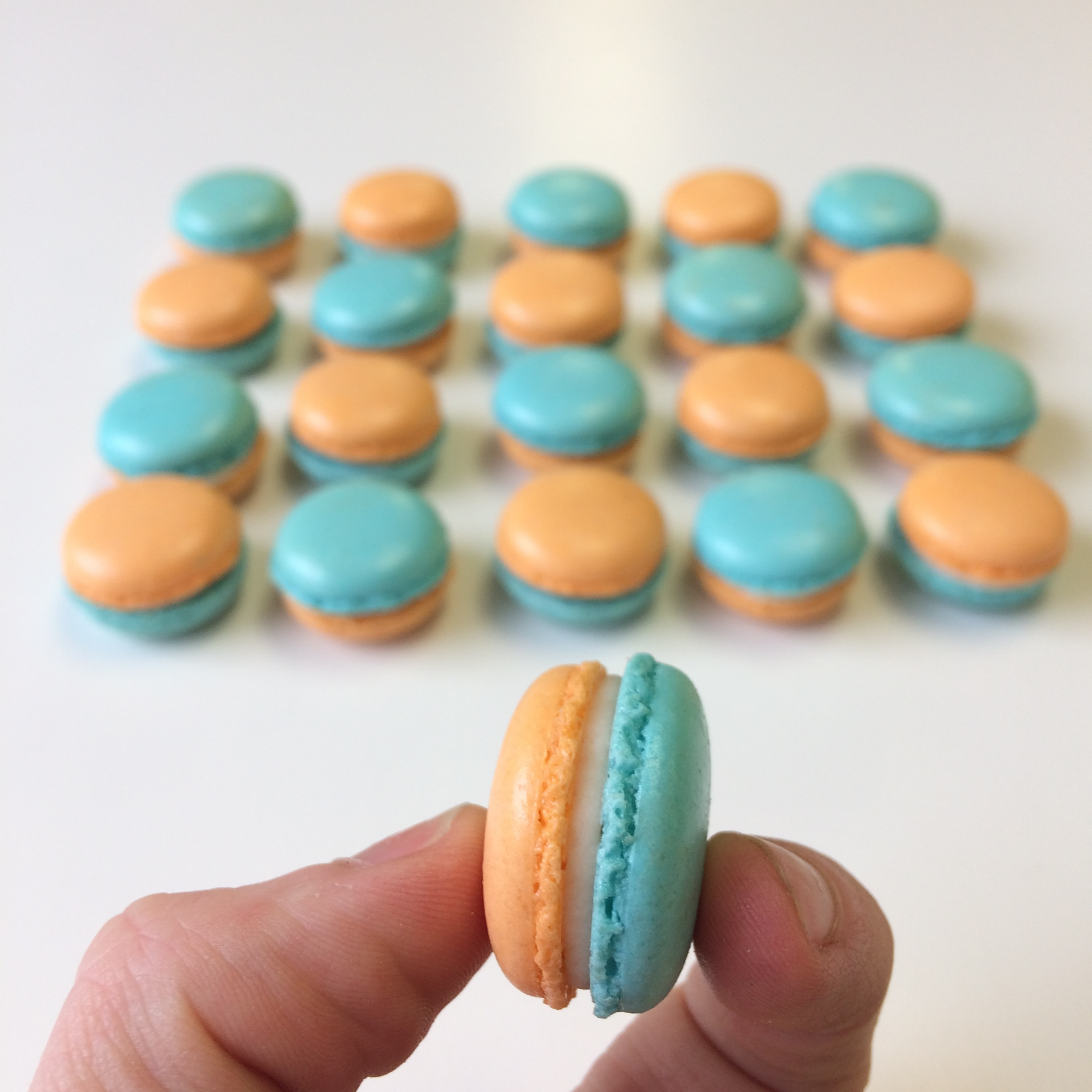 mini macarons by Seed Confections