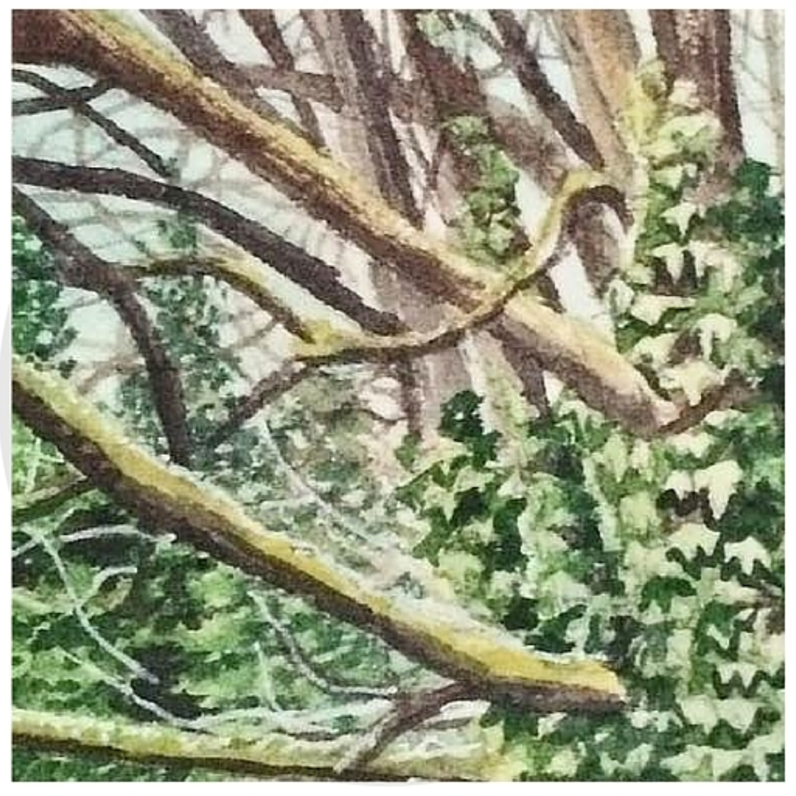 January 31, 2016  watercolour on Arches Aquarelle 140 lb paper  two inches x two inches  SOLD