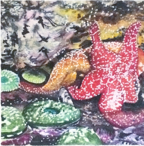March 9, 2016  watercolour on Arches Aquarelle 140 lb paper  two inches x two inches  SOLD