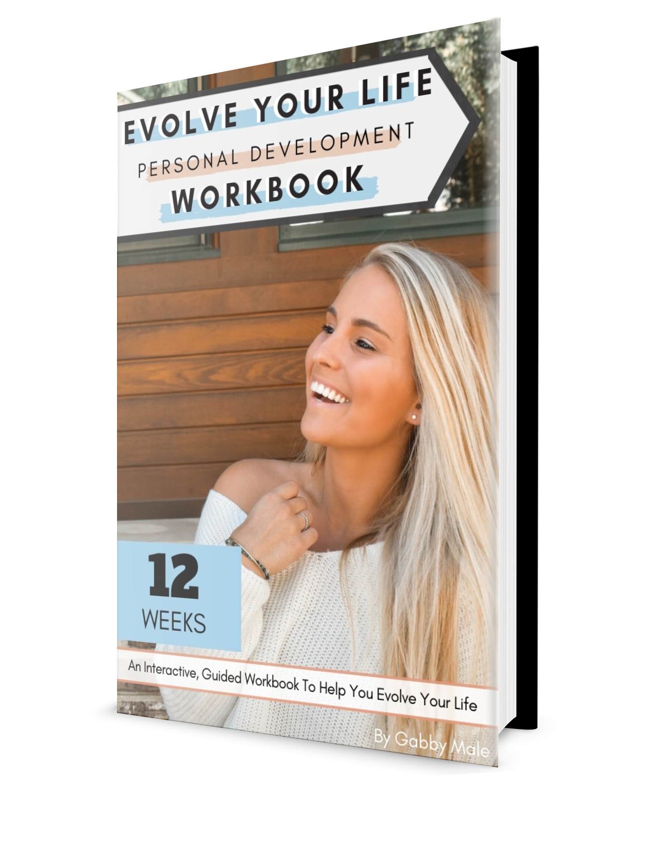 evolve your life personal development workbook by gabby male