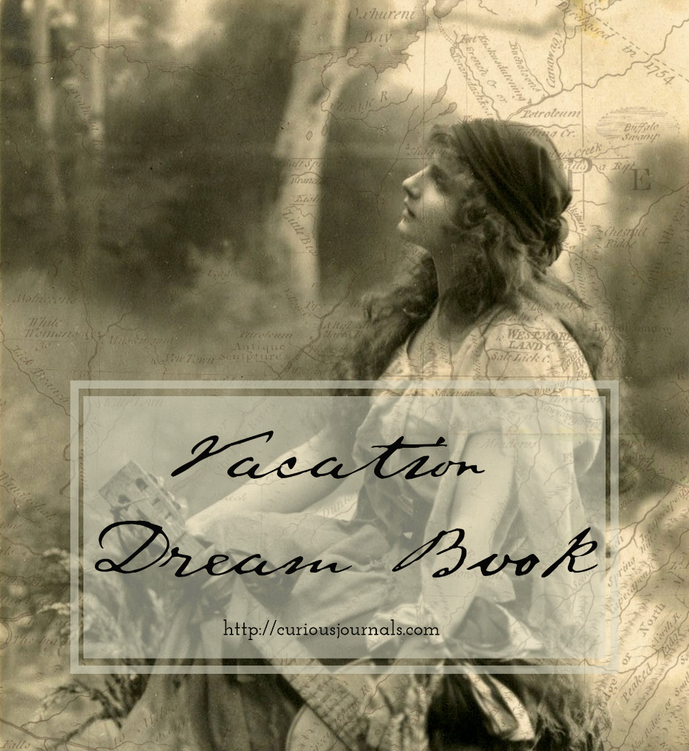 Vacation Dream Book Cover 3.png