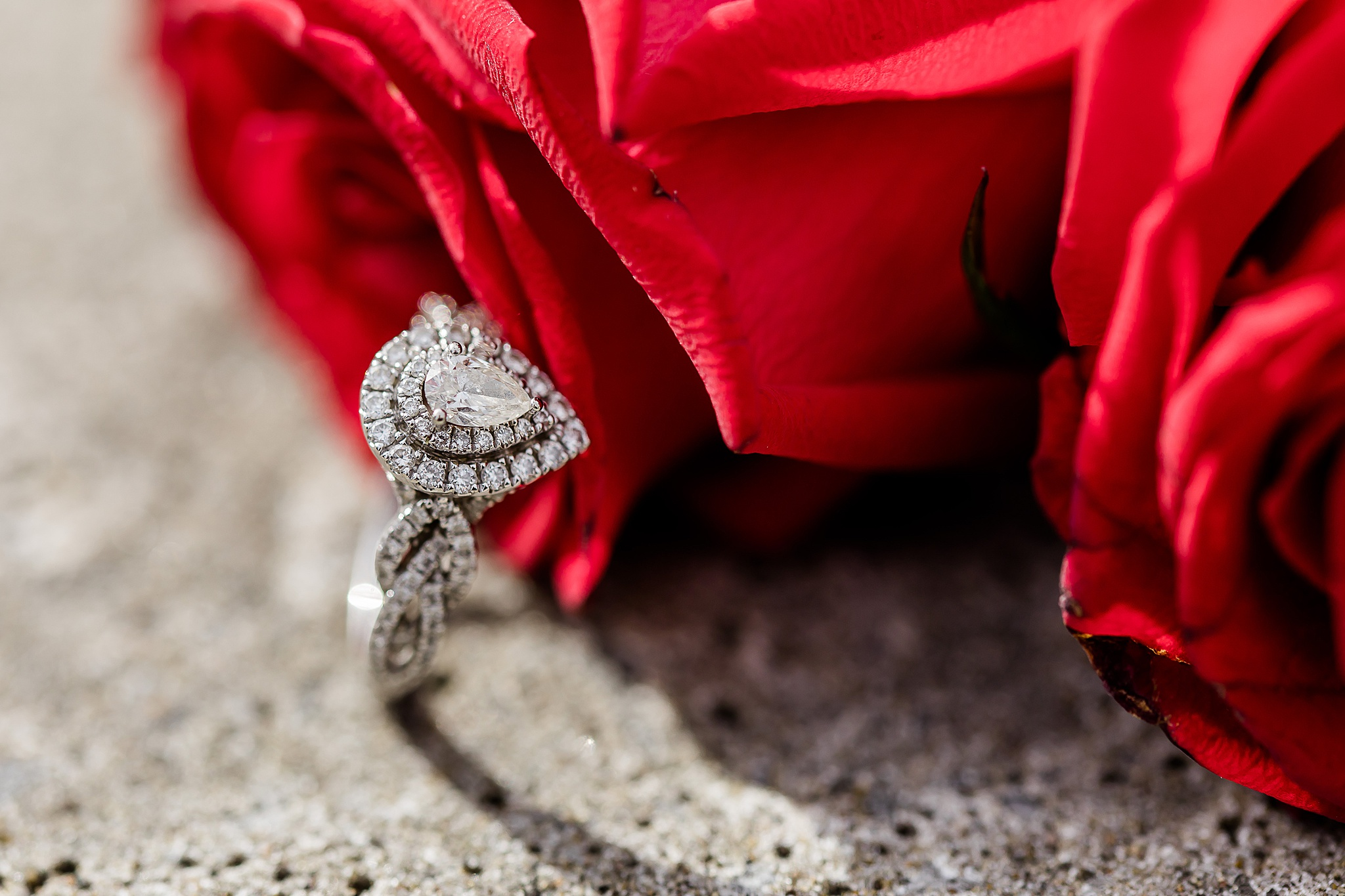 lafayette indiana engagement wedding photography coxhall gardens_0044.jpg