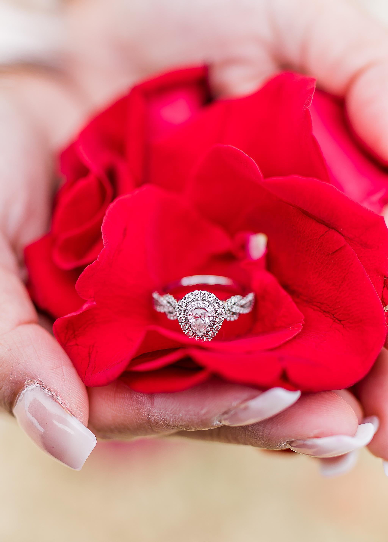 lafayette indiana engagement wedding photography coxhall gardens_0055.jpg