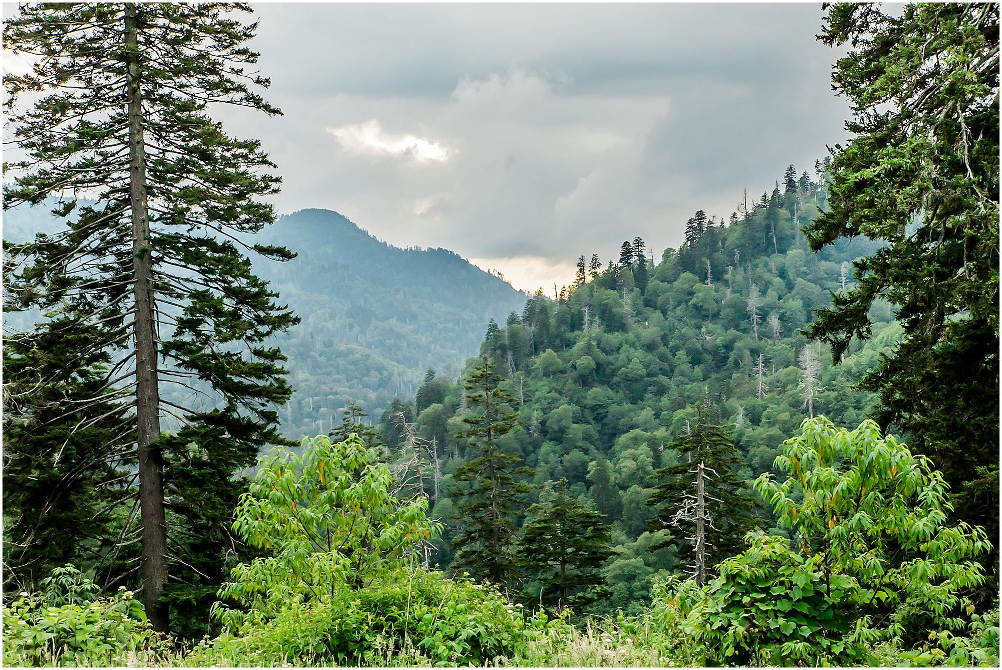 surprise proposal gatlinburg tennessee mountain engagement hiking new adventure productions_0117.jpg
