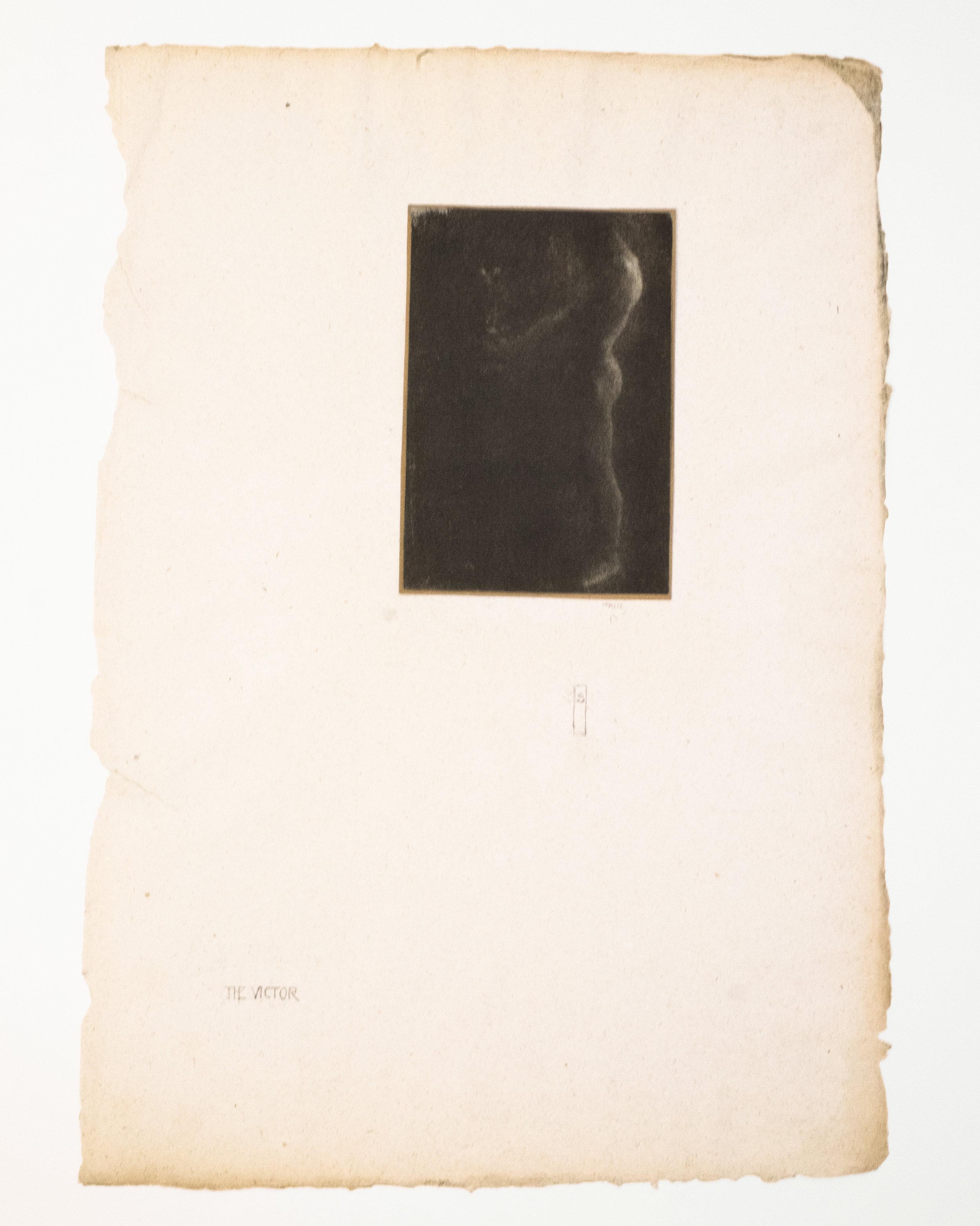 Edward Steichen's  Victor , courtesy of the Howard Greenberg Gallery