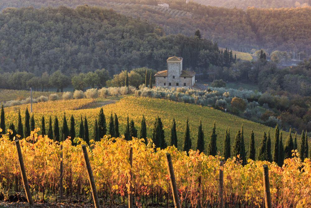 Wanderlust-blog-wine-tour-Tuscany