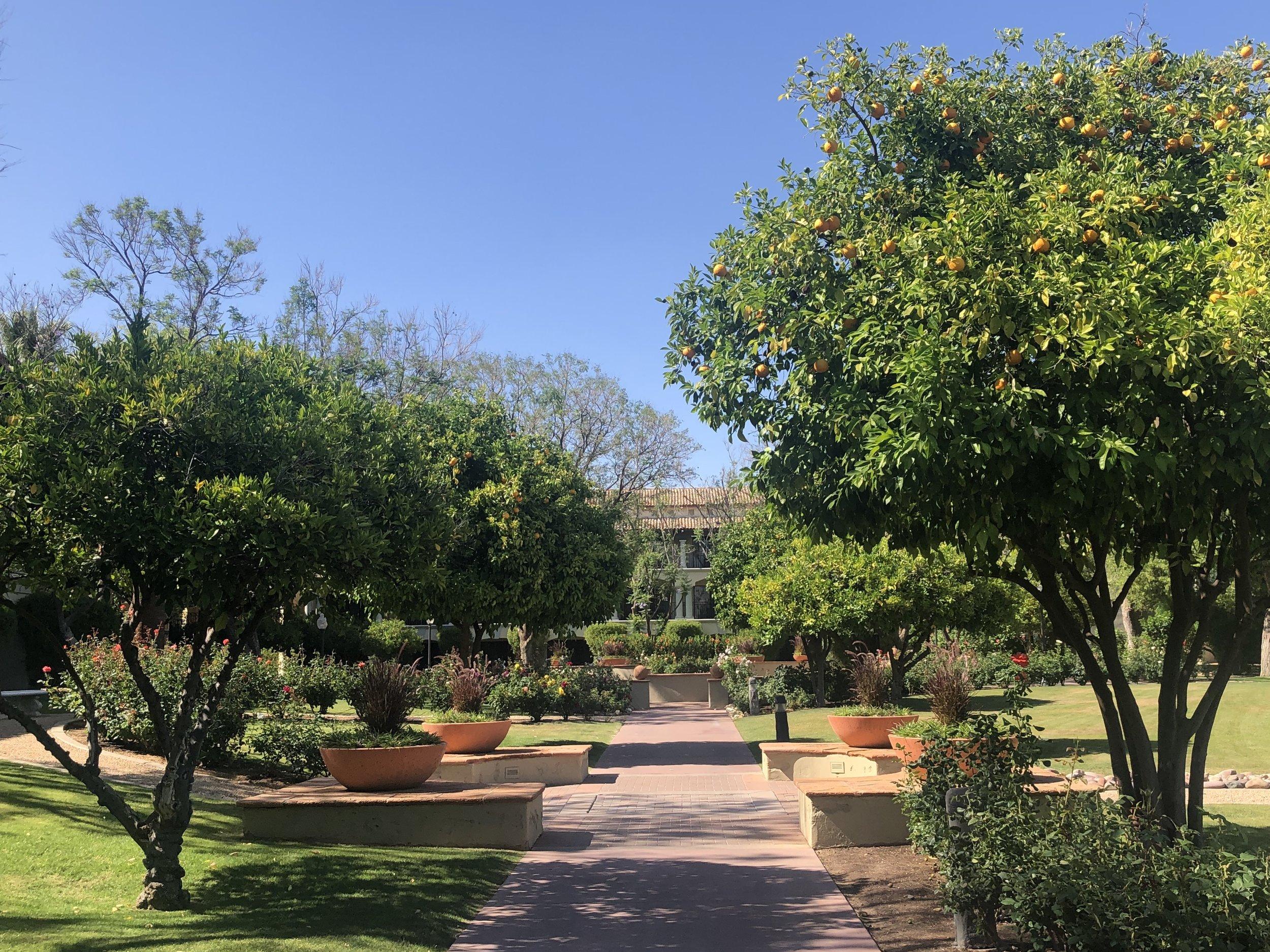Wanderlust-travel-blog-Fairmont-Scottsdale-Princess-Arizona-hotel