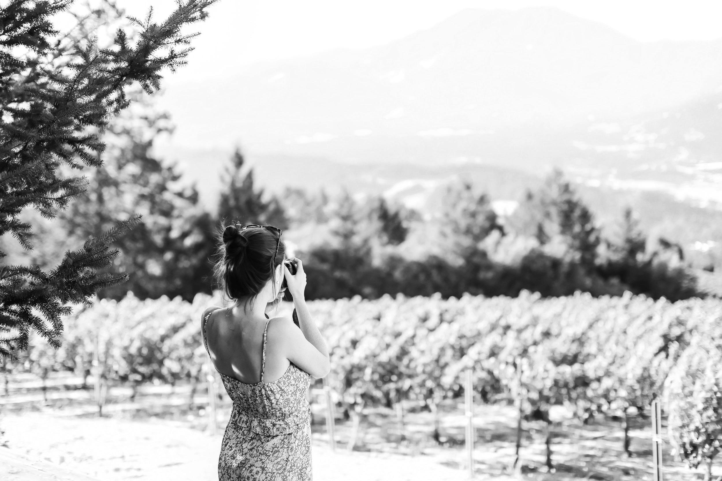 WineCountryDinner-17.jpg