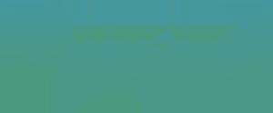 DI-web-logo2.png