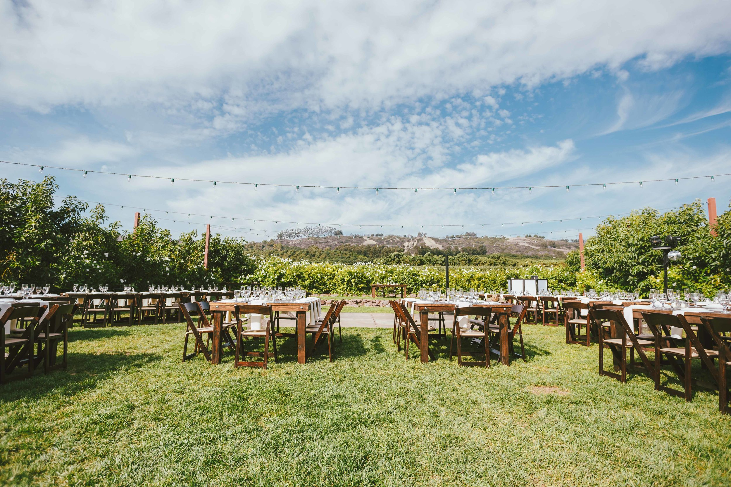 2015-Perkinson-Wedding-GerrysRanch-0058-web.jpg