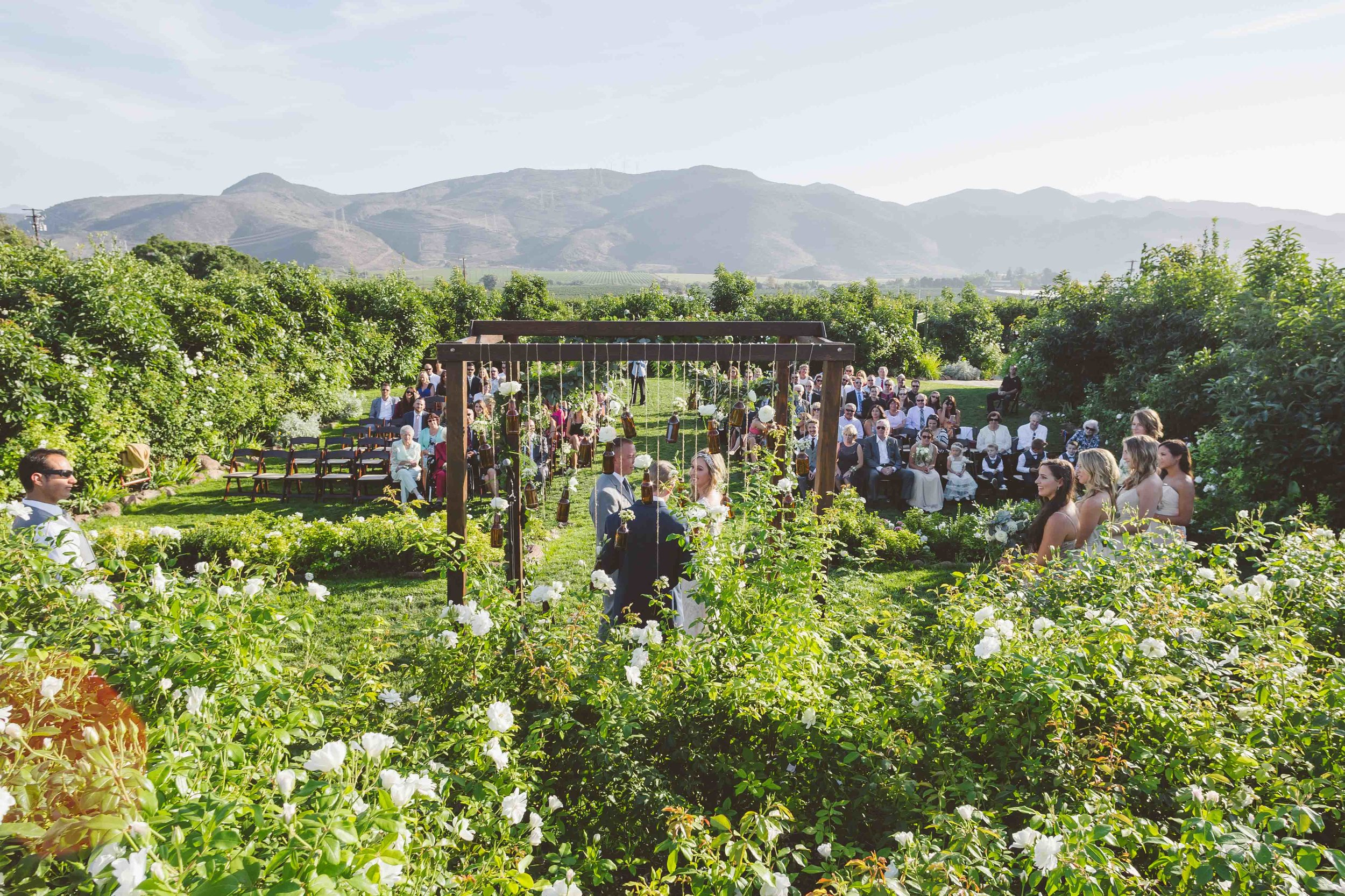 2015-Perkinson-Wedding-GerrysRanch-0146-web.jpg