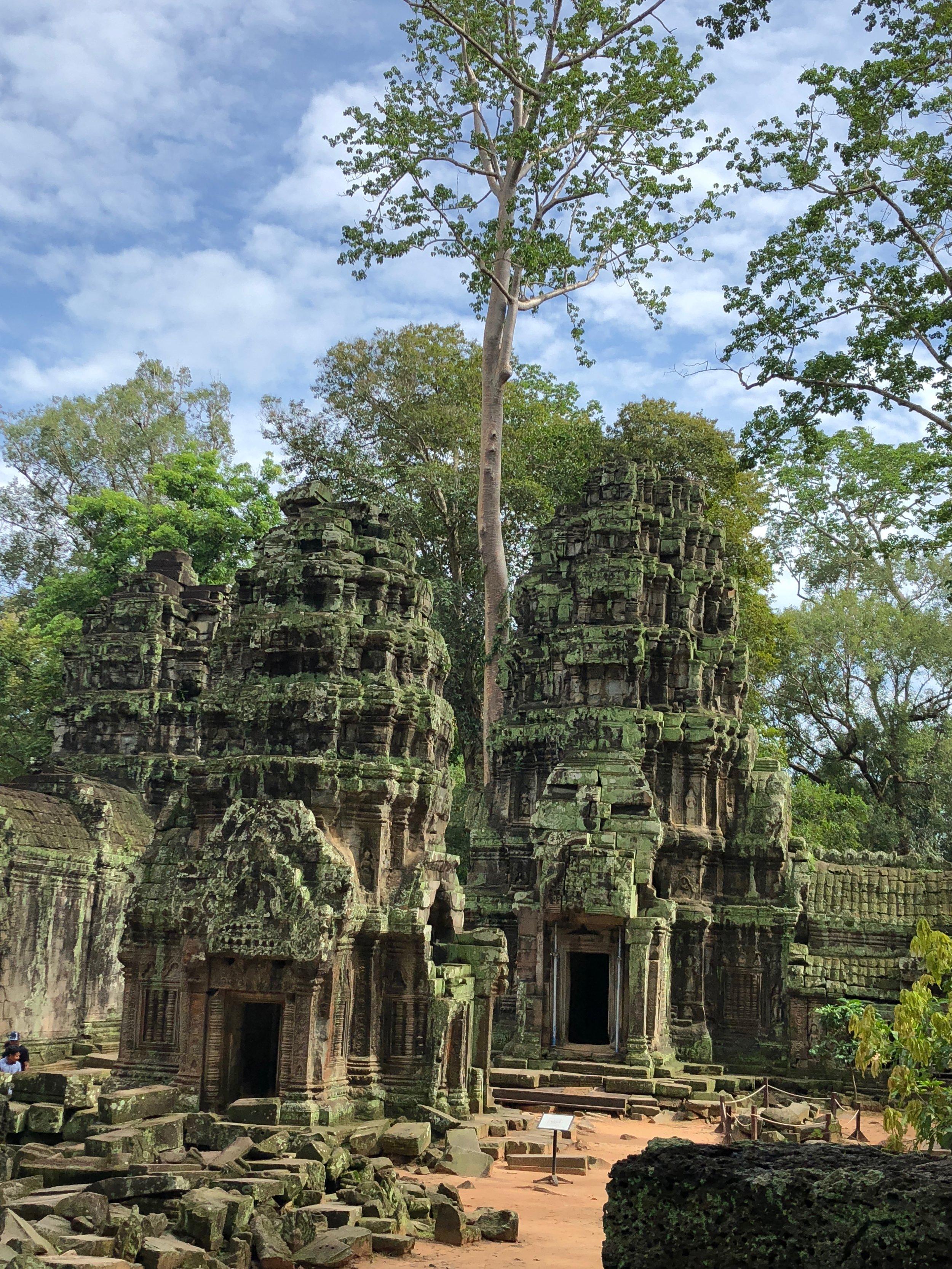 ta_prohm_temple.jpg