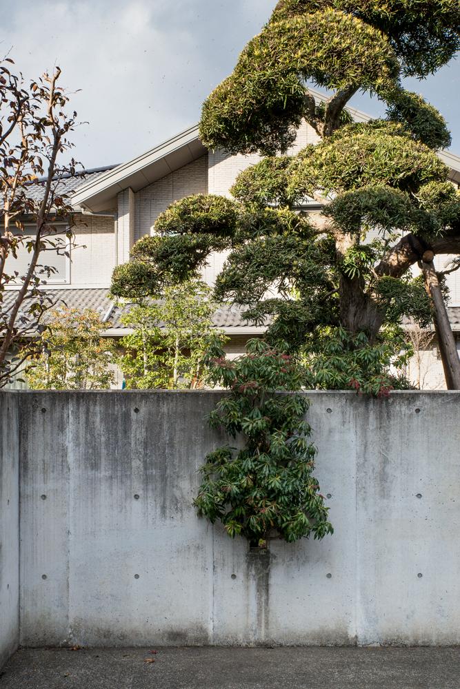 Tokyo17-ParisBrummer.jpg