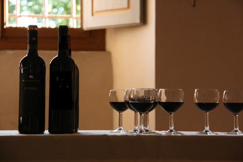 wineglasses_0755
