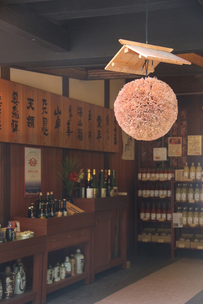 A brewery's cedar ball, hung when green at the beginning of the brewing process. When it turns brown, the sake is ready.
