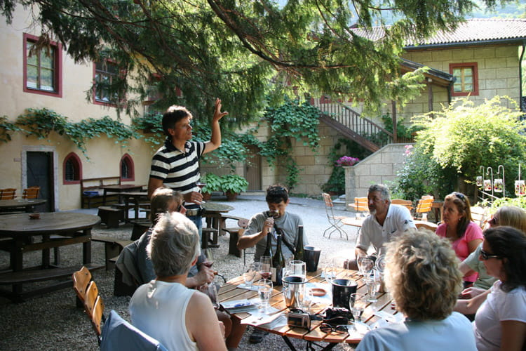 tiefenbrunner winery
