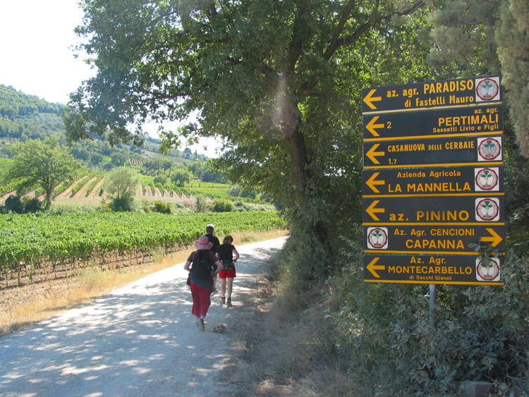 tuscany walking tours