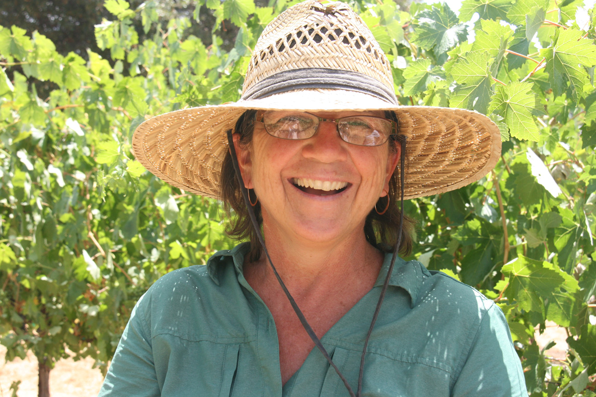 Ann Kraemer, growing Barbera in Amador County