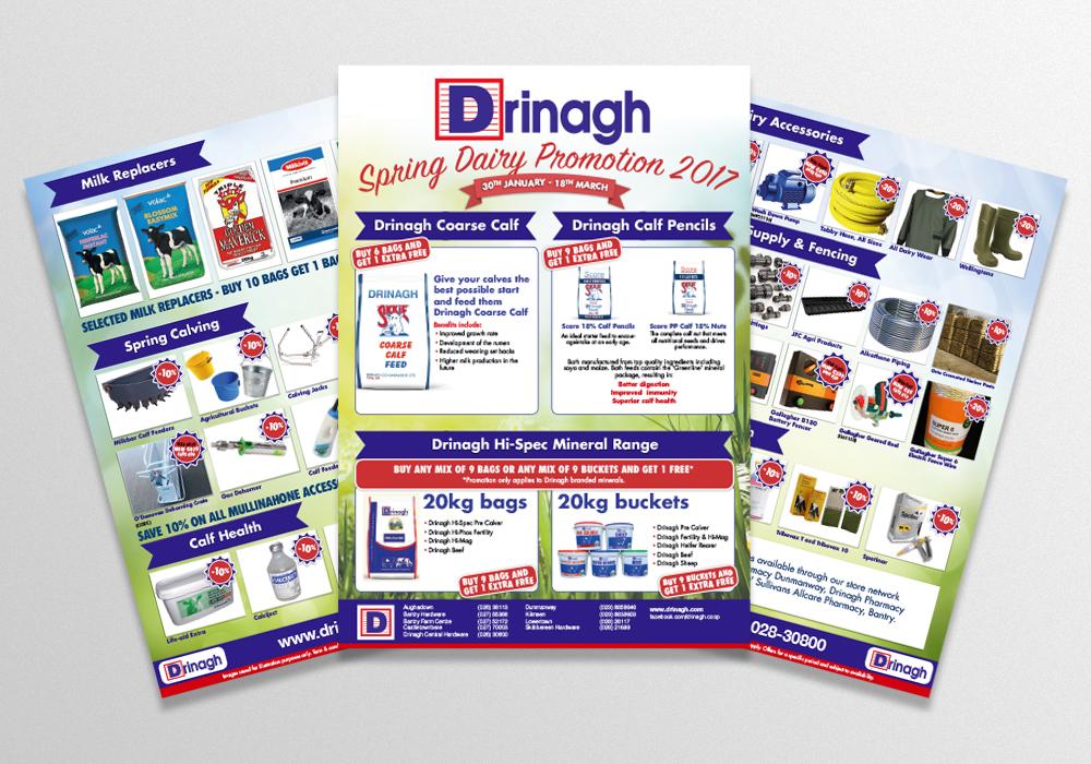 Drinagh Spring Brochure.jpg