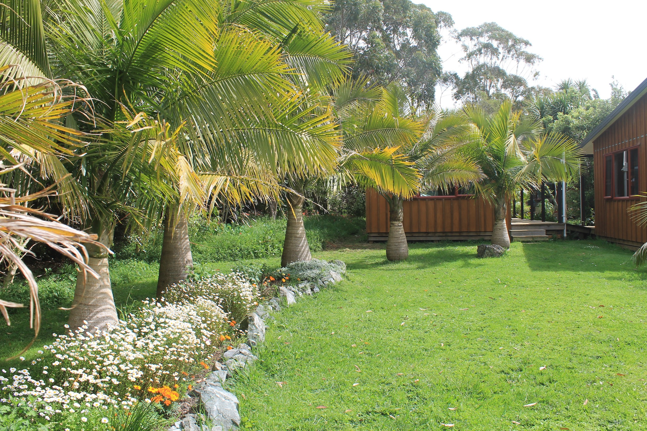 PALM GROVE AT GUARDIAN HOUSE