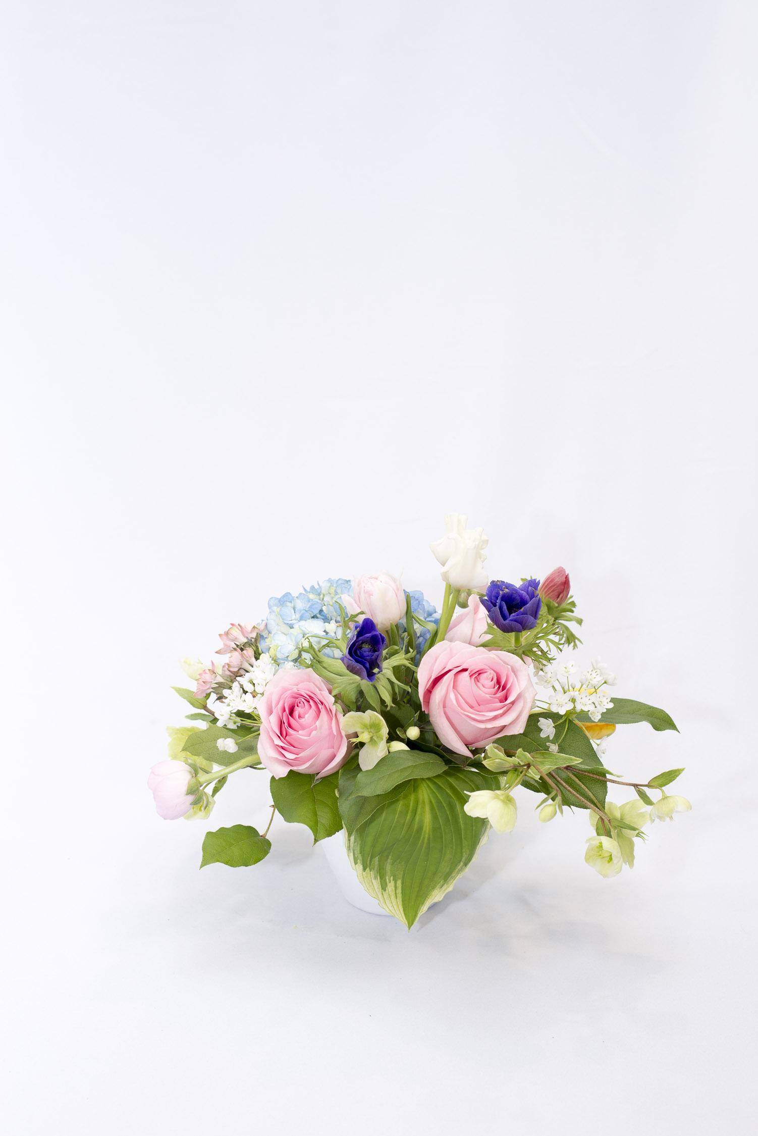 blooms00008.jpg