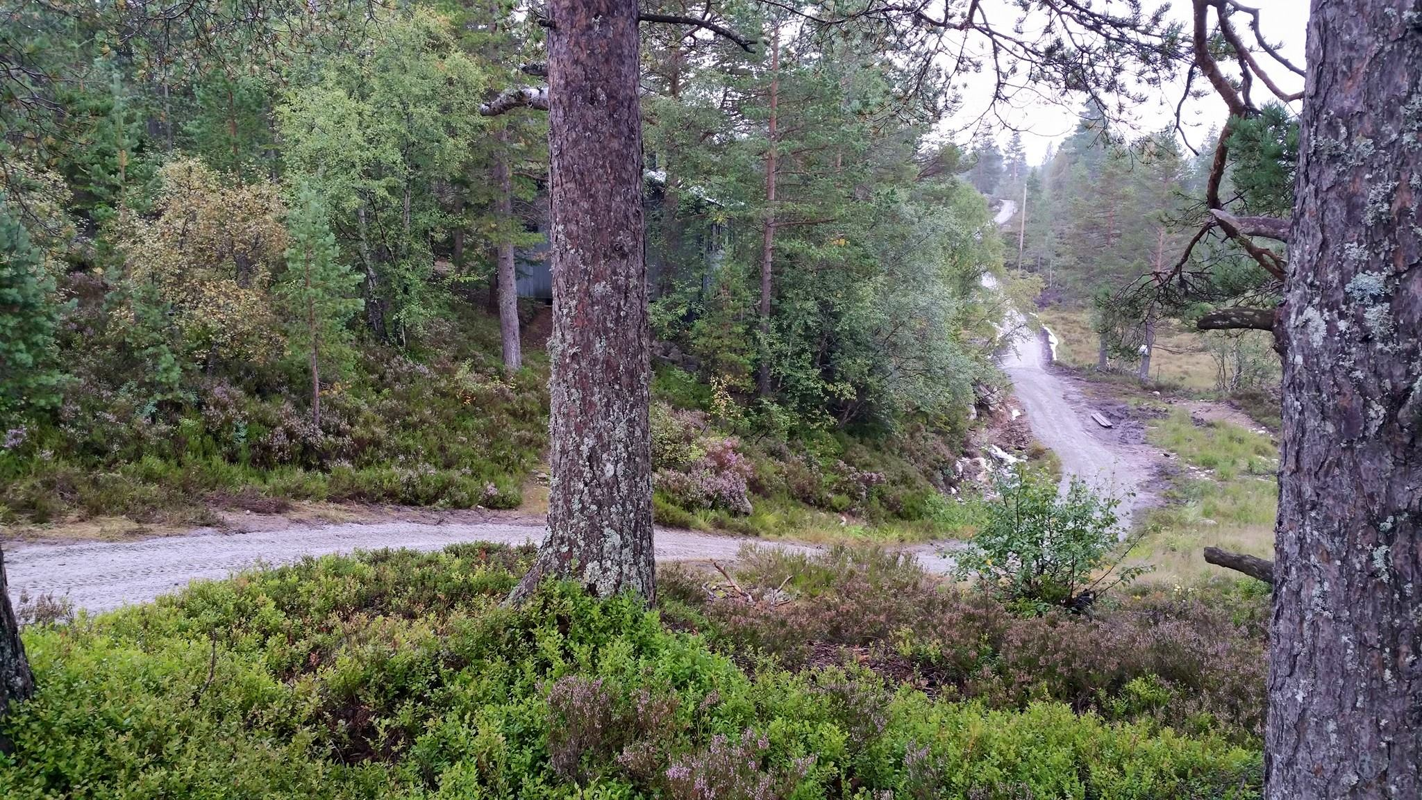 Gruset tur- og sykkelløype langs Bjørnen / Hestheiløpa løypa