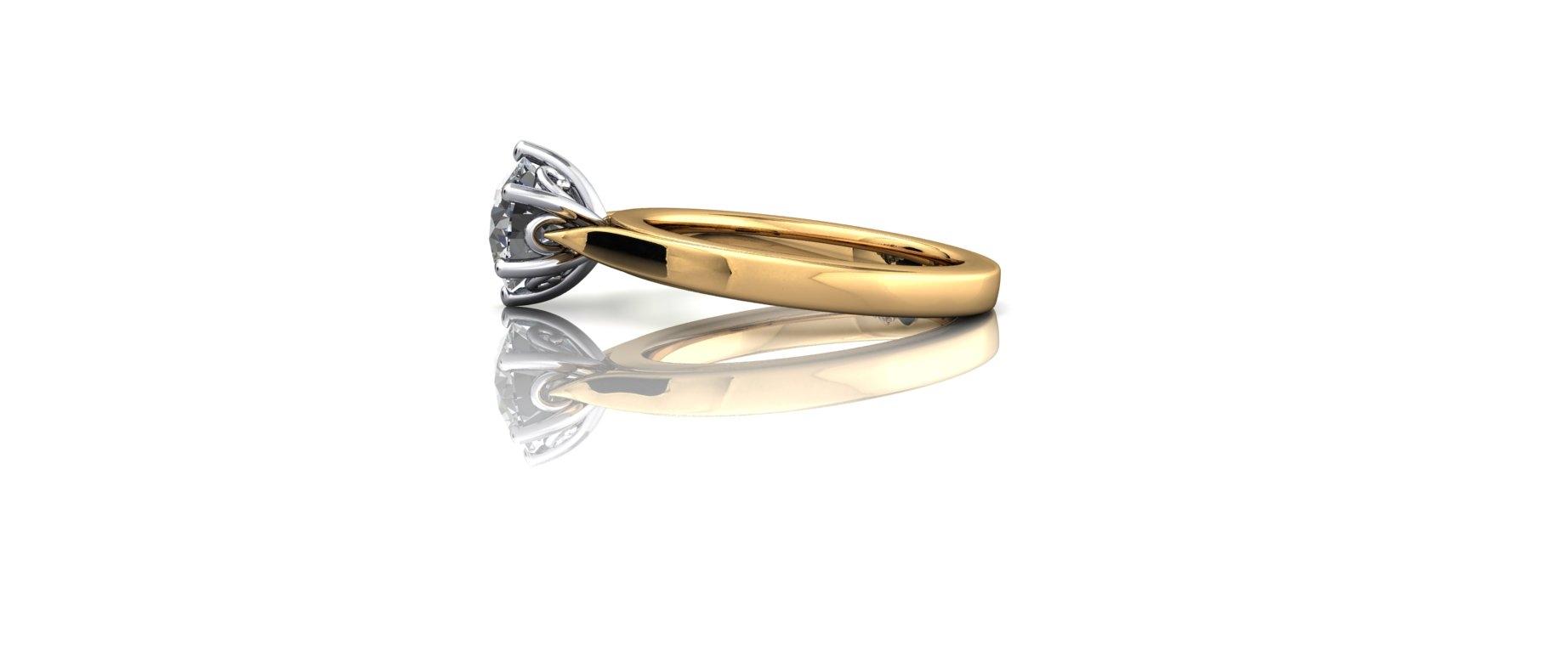 Redesigned Ring.jpg