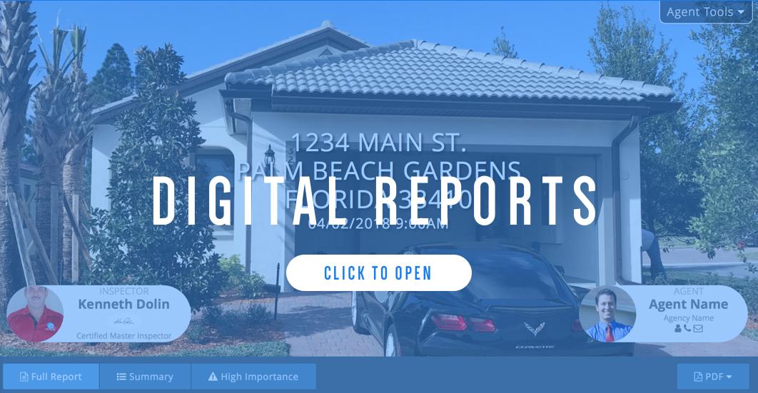 Digital Reports.png