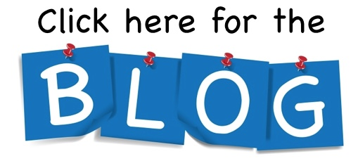 Blog3.jpeg