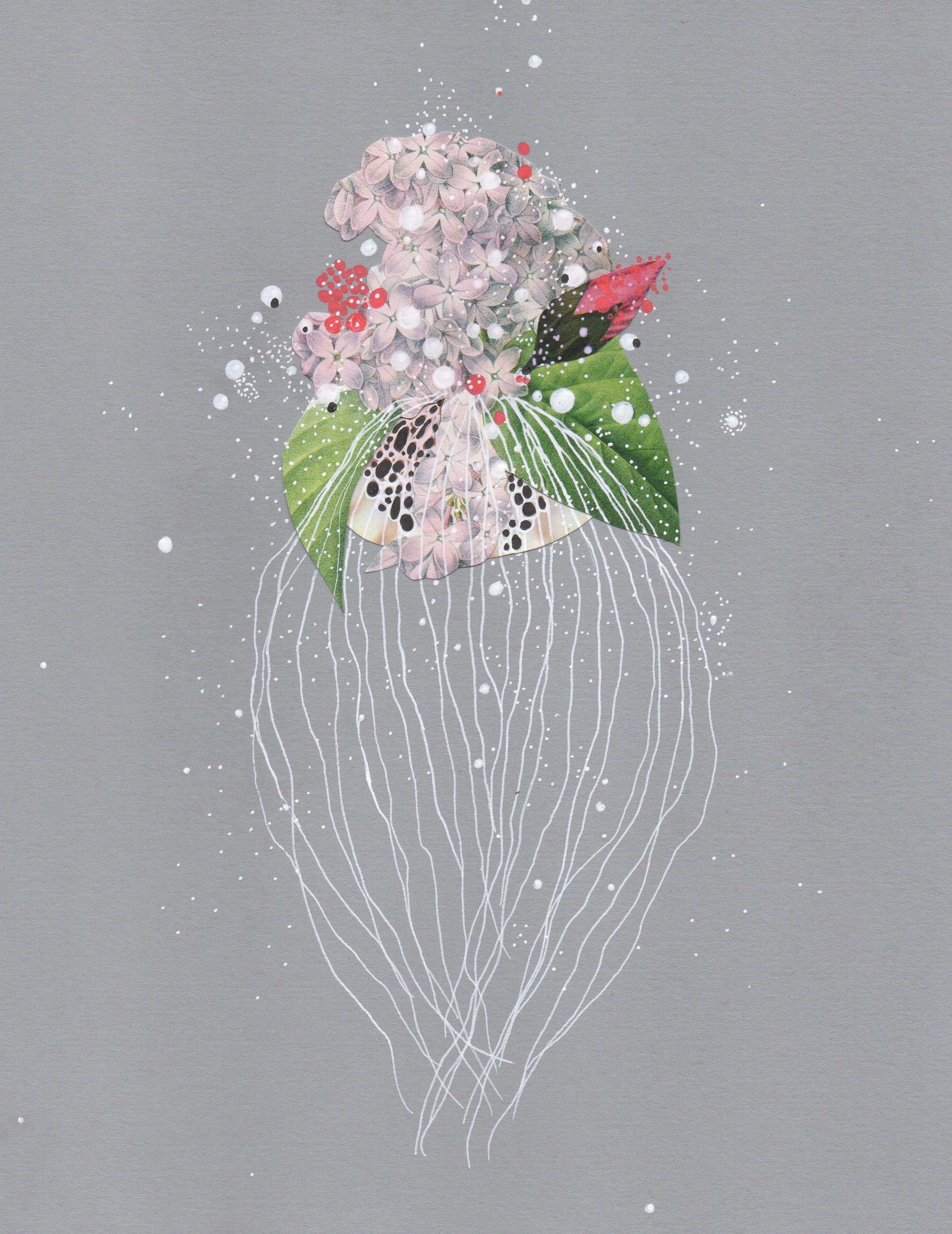 winterlilacjellyfish.jpeg