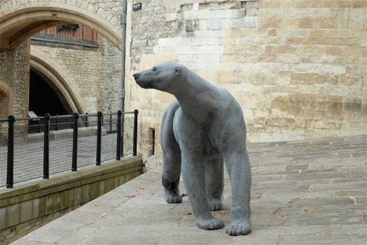 Polar Bear-Tower of London.jpg