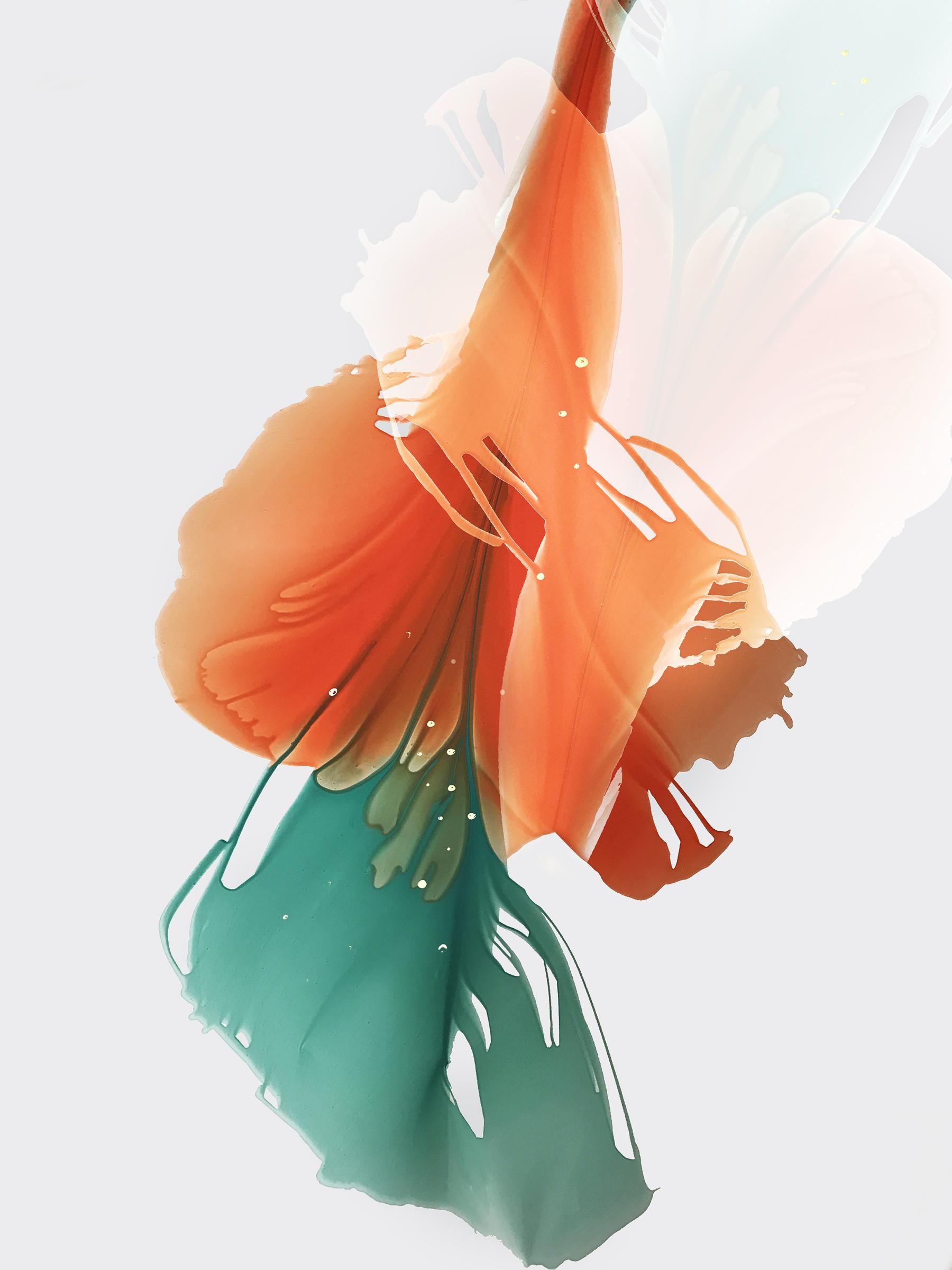 martaspendowska-bloomlands-5-s.jpg