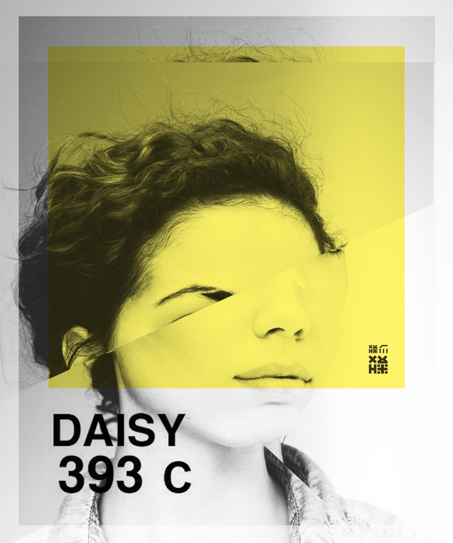 10x12_daisySM_a_Collage.jpg