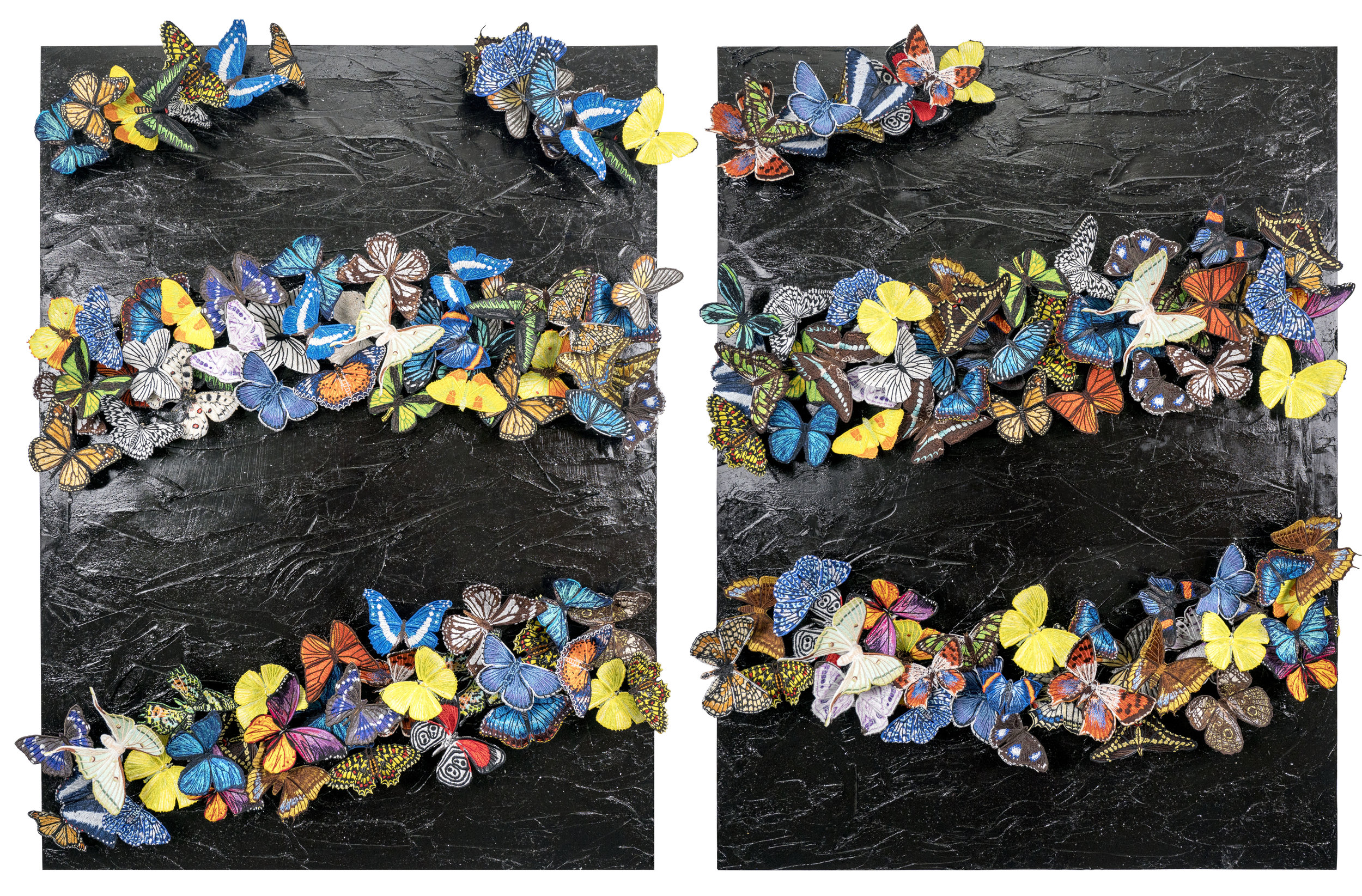 SWS0651_You'll Blow Us All Away, Someday, Someday Composite_Diptych.jpg