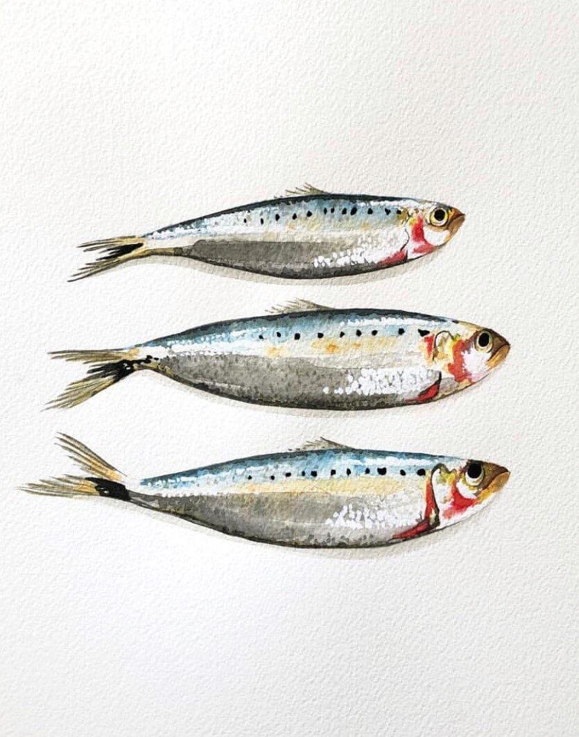 3_sardines.jpg